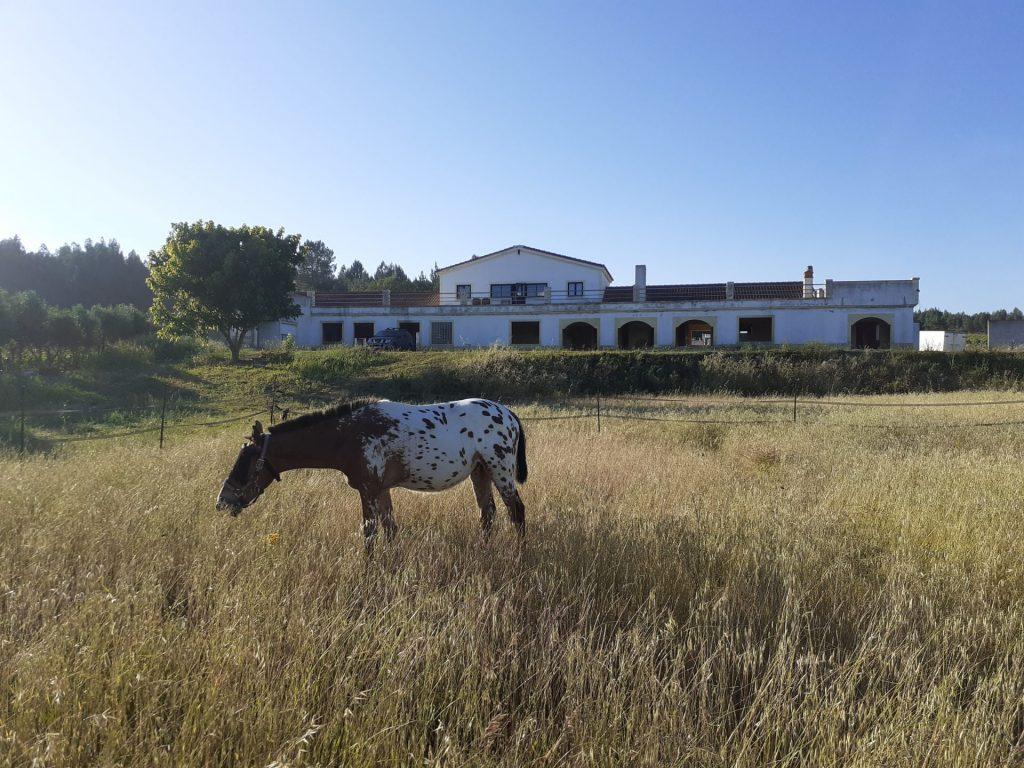 Villa o Sonho